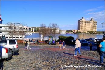 Overlooking the Savannah river