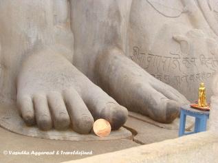 The towering 'Gommateshwara' Statue