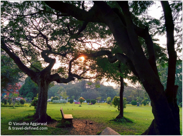 Cubbon Park Evening